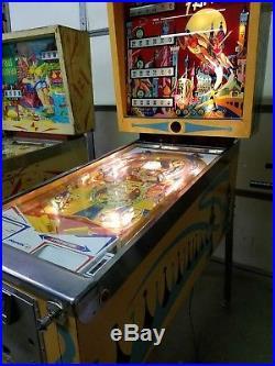 Fantasy pinball machine